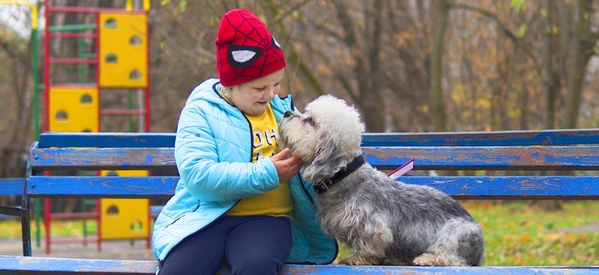 Юному владельцу собаки